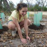 Planting balgas.