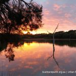Lake Claremont sunset.