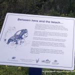 Interpretive signage.