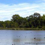 Lake Claremont View.