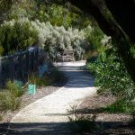 A continuation of the walkpath.