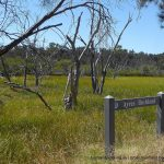 Ayres Bushland signage.