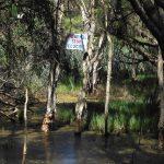 Carters Swamp.