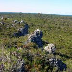 Yanchep NP Rose Lookout.